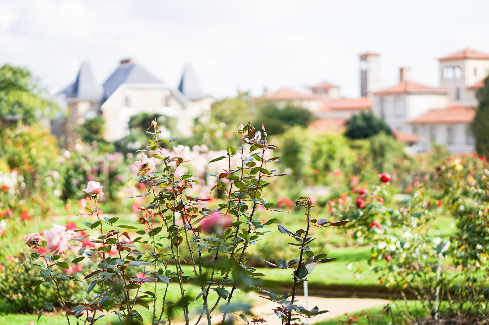 1-jardin-thabor-rennes-photo-couverture-résolutions-janvier2018-conseils-article-blog-oberthur-lifestyle-papeterie-rennes